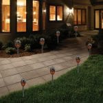 Eco-Think 2-Pack Outdoor Solar Blazing Light Set